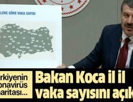 Türkiye de İl İl Vaka sayısı