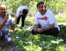 Aksaray'da Sanal toplulaştırma projesi hayata geçirilecek