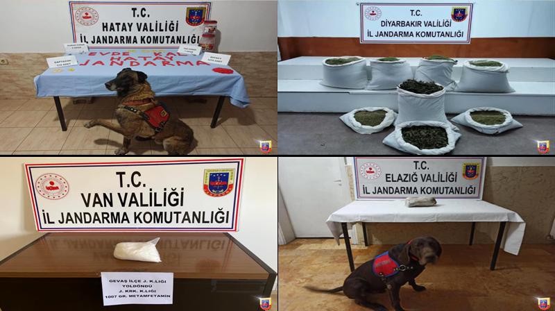 Jandarma'dan 4 ilde Uyuşturucu operasyonu