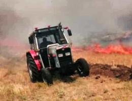 250 Dekar ekili arazi kül oldu