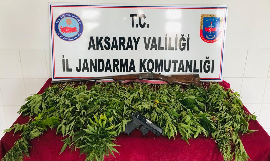 Jandarma dan uyuşturucu operasyonu